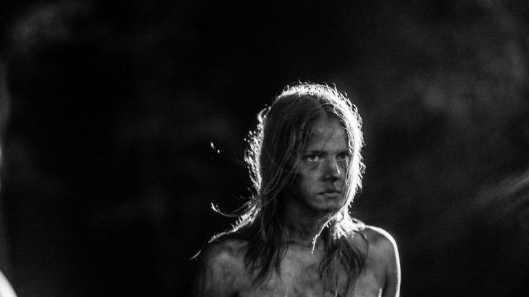 """""""Ноември"""" оплита местните фолклорни мотиви и митология с кодовете на жанра и западните образци на ужаса. Върколаци, вещици, призраци, сатанински фигури и други чаровни персонажи на страха дефилират в черно-бялата приказка за пораснали."""