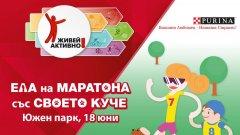 Първият маратон за кучета и техните стопани ще се проведе в София