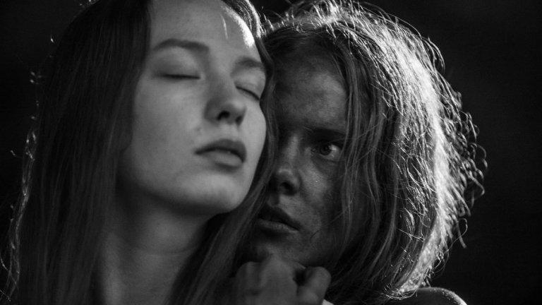 """""""Ноември""""  Годината определено беше странна за киното и няма по-силно доказателство за това обстоятелство от присъствието на естонски филм сред най-високо оценените заглавия. С """"Ноември"""" режисьорът Райнер Сарнет предлага на публиката притеснителен и внушителен хорър филм, който вдъхнови феновете да търсят сравнения с Марио Бава, Ингмар Бергман и Ларс фон Триер."""