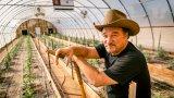 Как Джеймс Белуши направи ферма за марихуана, за да почете паметта на починалия си брат