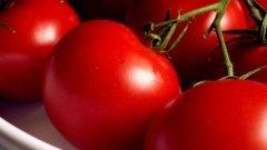 Земеделският министър Мирослав Найденов каза, че гръцките домати, заразени с молец, не били опасни за здравето...Обаче са опасни за оранжериите ни