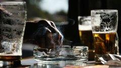 Наднормено тегло, пушене и алкохол над средните за ЕС