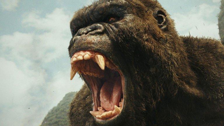 """Гигантската горила Кинг Конг е друго епично, грамадно чудовище, което завладява киното, комиксите, литературата, видео игрите и фантазията на режисьорите. В оригиналния филм на Мериан Купър, влюбена в горилите още от детска възраст, животното се казва Конг и живее на Острова на черепа в Тихия океан, където си съжителства с динозаври. Aмерикански филмов екип пристига на острова и пленява Конг, след което го кара в Ню Йорк и го излага пред публиката като """"осмото чудо на света"""". Към края на филма ставаме свидетели на смъртта на Конг на върха на Емпайър Стейт Билдинг, където е убит от самолет. Паметна е любовта между Конг и Ан Дароу, която е сред първите художествени портрети на любов между човек и чудовище. Кинг Конг се появява в 12 филма за чудовища, 7 от които са холивудски. А скоро се задава битката му с Годзила. Ето това се казва """"сблъсък на гиганти""""."""