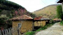 """Еленов дол  """"Замръзнало, автентично, с керпичени къщи"""" - така ни го описва журналиста Мария Лазарова, която беше причината да обърнем внимание на иначе непознатото за масовия турист село Еленов дол. Тя е от планинарите, които обикалят неспирно из Свогенските забележителности, затова можем да ѝ се доверим, когато откроява него като едно от красивите кътчета на този район.   Селото се намира в планински район с живописен релеф в Софийска област,на 45 км североизточно от град Своге. Постоянното му население наброява едва около 70 души. При толкова малко жители вероятно се досещате, че това е от онези селца, в които ще бъдете гостоприемно посрещнати и някой местен със сигурност ще иска да сподели с носталгия колко живо е било преди."""