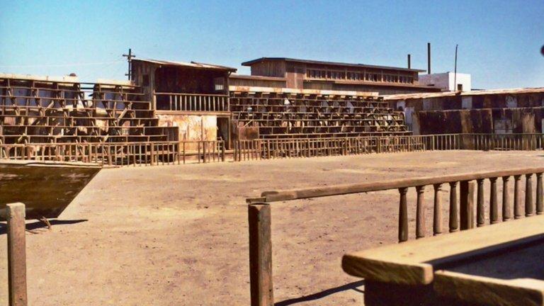 Пустият стадион в Хамбърстоун  Обезлюденият миньорски град Хамбърстоун се намира в чилийската пустиня Атакама. Между 20-те и 40-те години той е процъфтяващо място, тъй като там се разработва огромно находище от селитра. Но с развитието на химическата промишленост добивът става все по-неизгоден. И понеже няма какво друго да се работи, жителите постепенно започват да напускат града. Така от 1961 г. в Хамбърстоун не живее никой. Опустява и местният стадион, на който са се провеждали футболни мачове и други спортни мероприятия. Днес стадионът, заедно с театъра, рушащите се сгради и мините, са обявени за част от световното културно наследство на ЮНЕСКО.