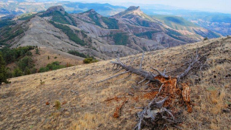 Интересни скални образувания са разпръснати навсякъде из местността.