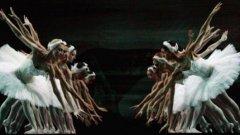 Нов документален филм вдига завесата на задкулисните игри в най-елитния московски театър. Филмът е сниман след атаката с киселина над артистичния директор, която обиколи световните медии през 2013-та