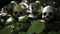 Канибализмът на Назинската трагедия успява да шокира дори и Кремъл