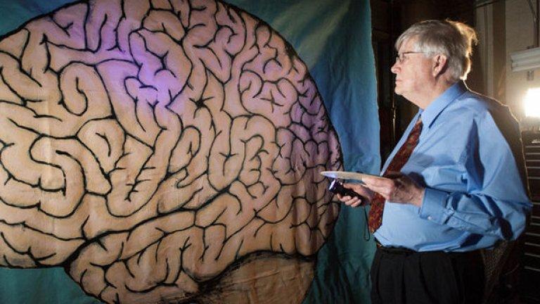 Учените работят неуморно по разшифроването на човешкия мозък и са достигнали до някои изумителни открития