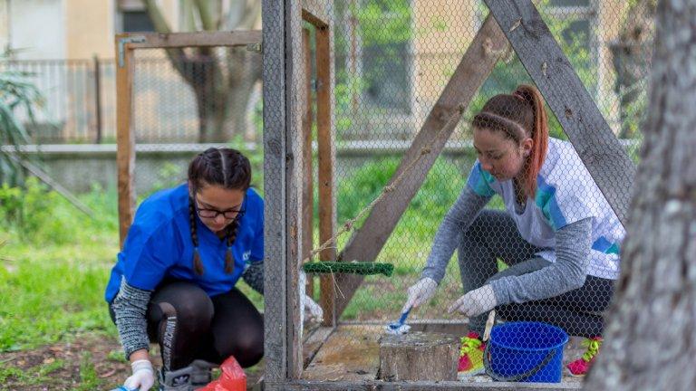 Чрез финансиране по проект на Българо-швейцарската програма за сътрудничество, центърът извършва голям брой екологични задачи, сред които е и обучаването и координацията на доброволци