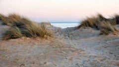 Следващата стъпка: асфалтиране на плажа