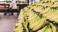 Усъвършенствахме жълтия плод, а сега може и да го загубим.