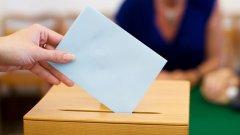 37 % от запитаните ще гласуват и са избрали за кого ще дадат вота си