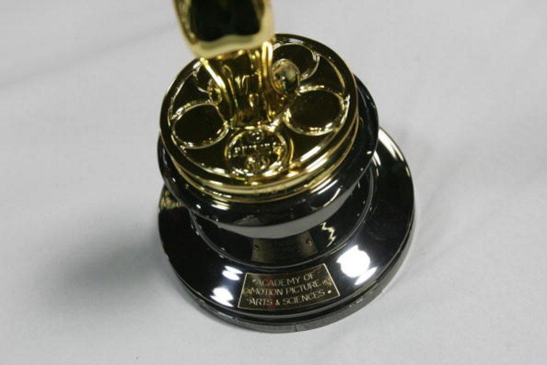 """Академията подготвя предварително табелки с имената на всички номинирани за """"Оскар"""". През 2014 г. общият брой на поръчаните пластини е 215."""