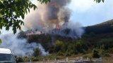 На място са около 50 души огнеборци, доброволци и горски служители