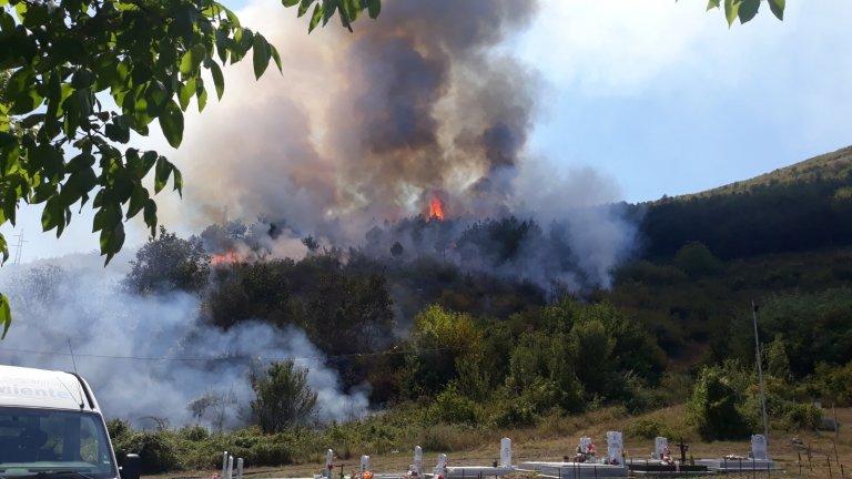 Унищожени са 100 декара борова гора, но пожарникарите не са допуснали разрастването на стихията