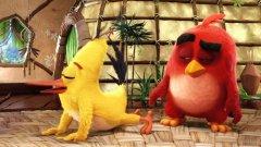 Въпреки двусмислени кадри като този, хуморът в Angry Birds изглежда насочен само към най-малките зрители