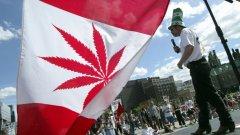 """""""Трябва ни повече трева"""", категорични са канадците"""