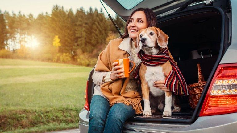 Дръжте кучето си далеч от антифризаАнтифризът съдържа етилен гликол, който за котките и кучетата има сладък и приятен вкус, затова е много важно да пазите четириногия си любимец от всякакви течности около колите и въобще да не му давате да пие от есенните локви. Уверете се, че вашият антифриз е прибран на сигурно място, а ако имате дори и най-малки съмнения, че кучето ви може да е погълнало антифриз - посетете спешно ветеринар.