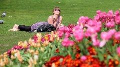 Как да издишаме градското лято - в парка, но и културно...