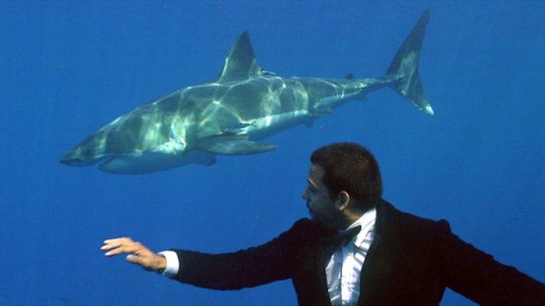 Илюзионистът Дейвид Блейн рекламира фрак на Адам Кимъл сред акулите