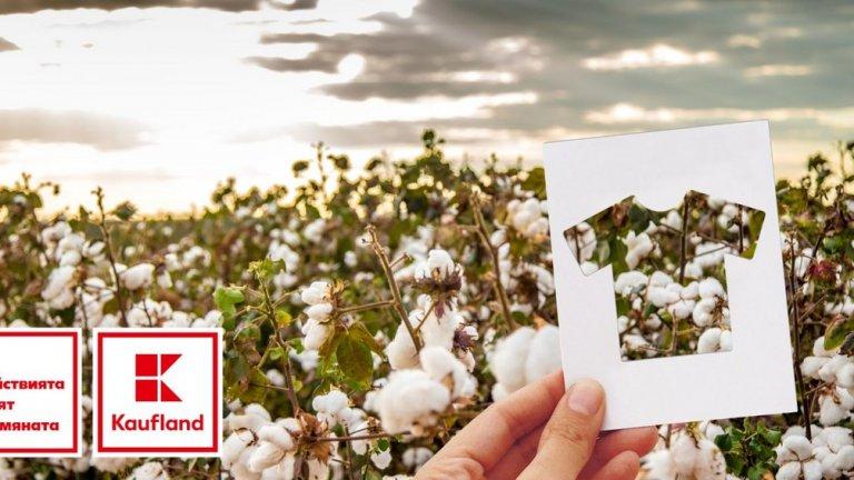 Собственият текстил на компанията е изработен от влакна от био памук и сертифициран по стандарта GOTS*, който следи цялата производствена линия от отглеждането на памука до крайния продукт.