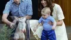 Първото дете на Уилям и Кейт се роди през лятото на 2013 година