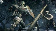 Игрите от типа на Dark Souls определено не са за всеки. Някои ги обикват отведнъж и не спират да се кълнат в тях, други така и не разбират какво толкова специално има в поредицата, за да се превърне тя във феномен в последните години
