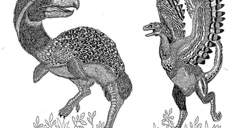 Кртолица се интересува и от изчезналите видове животни
