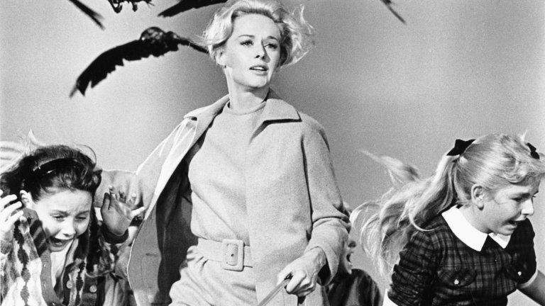"""""""Птиците""""Оценка: 90 от 100 Филмът е успял да побере гения на Алфред Хичкок по отношение на камерата, избора на музика и създаване на нелогични страхове в хората. Историята се развива през 60-те години в американско градче на Западния бряг, което ненадейно е нападнато от птици.Чайки, лястовици и врани атакуват без причина, а загадъчните ситуации трупат напрежение, доведено до краен предел."""