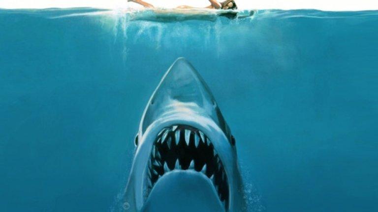 """Бърджис твърди, че броят големи бели акули е намалял с 50% по източното крайбрежие на Северна Америка в годините след излизането на """"Челюсти""""."""