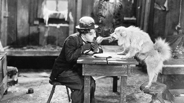 """Един от повратните моменти в неговия живот е, когато основава своя собствена филмова компания и започва сам да продуцира филмите си. По това време излизат късометражните """"Кучешки живот"""" и """"Хлапето"""", а след това и пълнометражните """"Парижанката"""", """"Треска за злато"""" и """"Великият диктатор"""", смятани за едни от най-великите филми в творчеството му."""