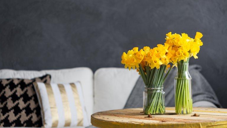 Създайте естествен акцент Може би нямате време и възможност да боядисвате мебели, да купувате лампа или възглавници в нов цвят, но пролетта е доста щедра поне с естествените цветове, които предлага. Това едва ли е нещо, което е далеч от ума ви, но колко често всъщност имате свеж букет на масата? Разбира се, цветята са най-хубави, преди да бъдат откъснати, но ако видите някоя жена, която продава нарциси/люляк/ириси, набрани от двора ѝ, помислете дали не искате да се възползвате от аромата и цветовете им у дома.