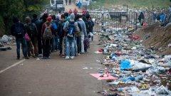 Премиерът Миланович се опитваше да демонстрира съчувствие към бежанците, но същевременно прояви твърда позиция и осъди съседните страни Унгария и Сърбия за начина, по който се справят с мигрантската криза
