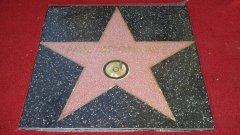 """""""Никога не бих могъл да си помисля, че би дошъл денят, когато аз ще получа звезда в холивудската Алея на славата. Това просто бе невъзможно да се случи"""", сподели сър Пол Маккартни"""