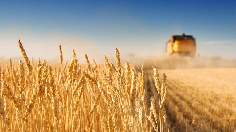 Банка в покрепа на българското земеделие