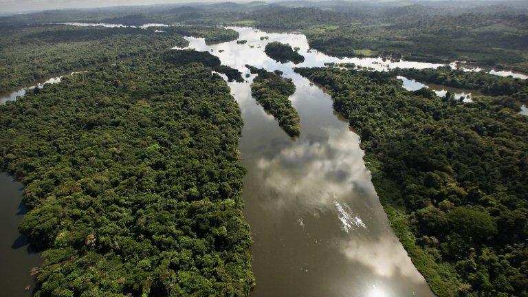 Политиката на Бразилия да неглижира проблема с Амазония доведе до действия от Норвегия и Германия