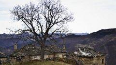 Родопското село Любино е разположено на около 40 км от град Кърджали. Ако не броим напукания асфалтов път до него, можем да кажем, че то е откъснато света. В тишината на безвремието тук си съжителстват каменни къщички от началото на миналия век, старинна джамия и... двама англичани.