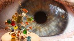 Дали гените, създадени в процеса на еволюция, принадлежат на цялото човечество...