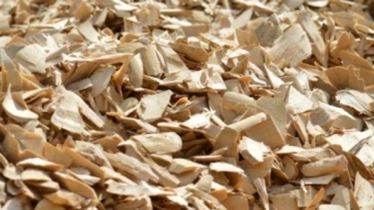 5. Дългият Джак,  Тонгкат  (Eurycoma longifolia, Tongkat Ali)  Дългият Джак, известен също и като Тонгкат е екстракт направен от дървесен корен. Той повишава нивата на тестостерон, заедно с енергията и повишава либидото.