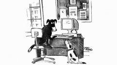 """През 1993 г. """"Ню Йоркър"""" пусна карикатура, изобразяваща две кучета пред компютър. Компетентното по въпросите на интернет четириного казва на приятеля си: """"В интернет никой не знае, че си куче"""". Тази смешка отразява волната анонимност в ранните етапи на Мрежата, но вече не е в сила..."""