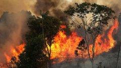 """Според министъра на отбраната огнената стихия е """"под контрол"""""""