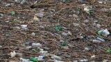 Няма пари за почистване на сметището в река Искър