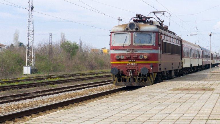 Създадена е организация за тяхното извозване до Бургас