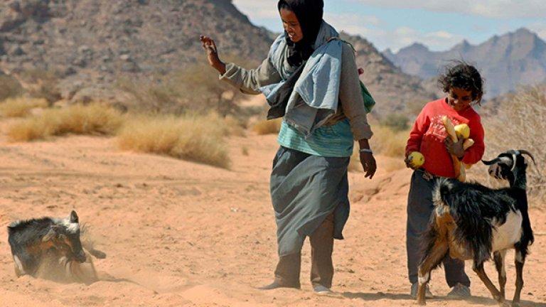 Пастирките, които живеят някъде из пустошта, се радват на току-що получените от нас подаръци - франзела, ябълки и шоколад.