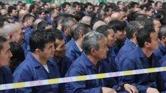 Близнаци, опитващи се да получат статут на бежанци, отчаяно се стремят да избeгнат съдбата на техен приятел, който за първи път разказва историята си на прекарано време в лагер за превъзпитаване в Китай (какъвто предполагаемо е този на снимката)