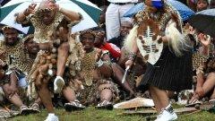 """Преди няколко месеца 68-годишният зулус подчерта уклона си към племенните традиции и нетърпимостта си към моногамните бракове, вдигайки пета сватба, която един от висшите духовници в страната обяви за """"гигантска стъпка назад към тъмните векове""""..."""