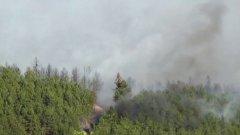 От началото на годината огнеборците са загасили 23 хил. пожара, огънят е унищожил над 20 000 дка гори и 50 000 дка други площи