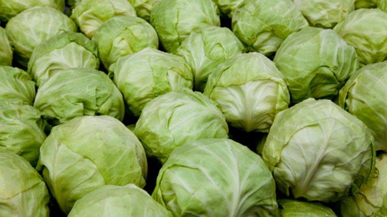 Зеле- 21 калории / 100 гр. Зелето ечаст от растителното семейство кръстоцветни. Кръстоцветните зеленчуци като зеле, къдраво зеле и броколи са известни с това, че изобилстват от полезни хранителни вещества. Ако се опитвате да подобрите диетата си, кръстоцветните зеленчуци трябва да бъдат в най-горната част на списъка с храни. Много проучвания показват, че увеличаване на потреблението на растителни храни като зеле, намалява риска от диабет, затлъстяване, сърдечни заболявания и др.То може също така да способства за подсилване на имунната система, за повишаване на енергията и редуцирането на теглото.