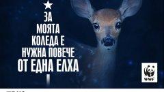Подкрепете природозащитната организация, за да продължи да опазва горите в България